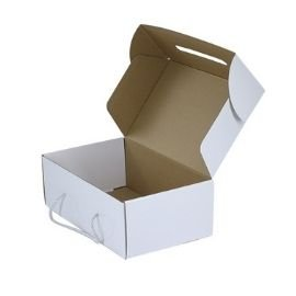 Mailer box with handle