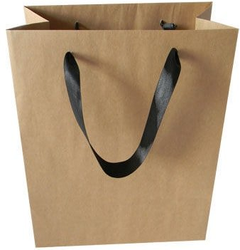 Paper bag with a ribbon handle